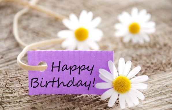 تولد داریم امروز عیده